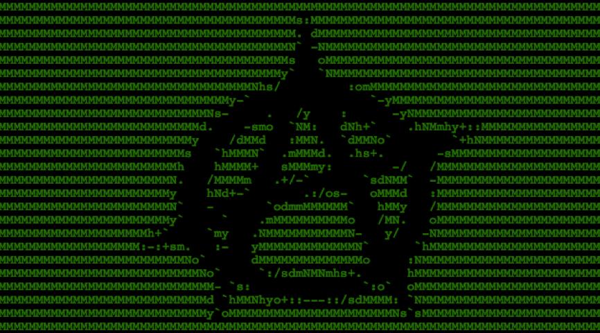 developer anarchy day
