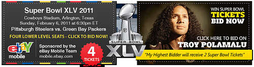 Super Bowl XLV Charity Auction